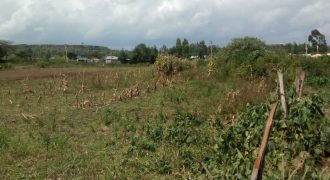 Prime Plot for Sale in Gilgil Langa Langa Area