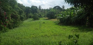 3 Acres Land for Sale in Mtwapa