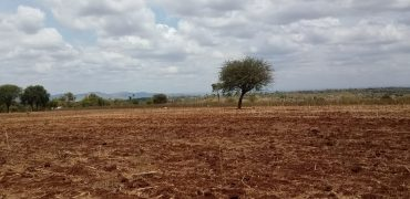 Plots for Sale in Sagana