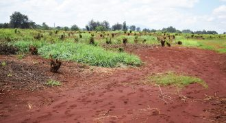 PRIME PLOTS ALONG THIKA SUPER HIGHWAY