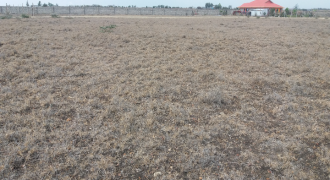 1/8 Acre plot in Kitengela