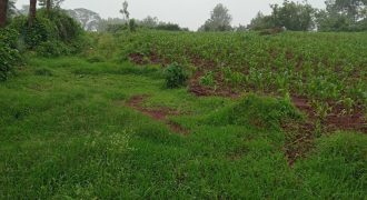0.5 Acre Prime Land on Sale at Karura Kanyungu in Kiambu County